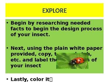 Unit 4 Lessons 5-6 and Senses lessons 1-2