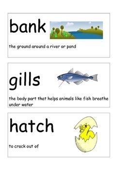 Unit 5 Journey's Kindergarten Oral Vocabulary Cards