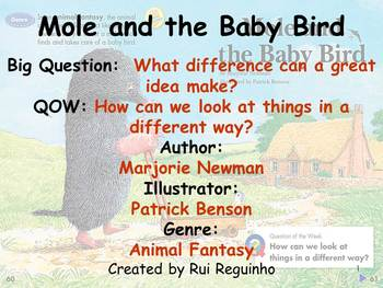 Unit 5 Week 2 - Lesson - Mole and the Baby Bird - Lesson Bundle (2013,2011,2008)