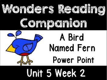 Unit 5 Week 2 Wonders Power Point First Grade A Bird Named Fern