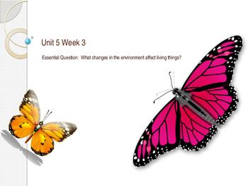 Unit 5 Week 3 Power Point Presentation