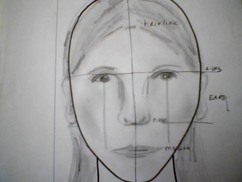 PDSA lesson of facial proportions