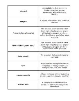 Unit Overview & Key Words - Biochemistry