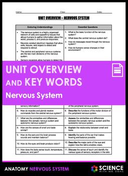Unit Overview & Key Words - Nervous System