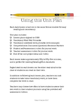 Unit Plan for You May Already Be a Winner by Ann Dee Ellis