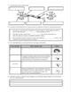 Unit Review - Nervous System