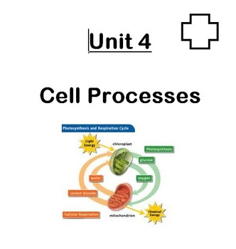 Unit in a Folder: Cell Processes (Photosynthesis/Respiration and Cell Transport)