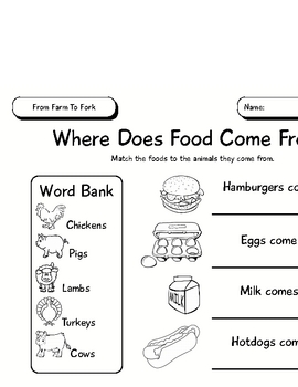Unit of Inquiry - Food Study - From Farm To Fork - Animal