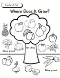 Unit of Inquiry - Food Study - From Farm To Fork - Where D