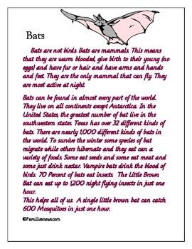 """Unit study """"Bats"""""""