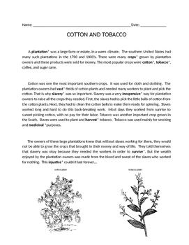 United States Civil War: Cotton & Tobacco Text/Comprehension