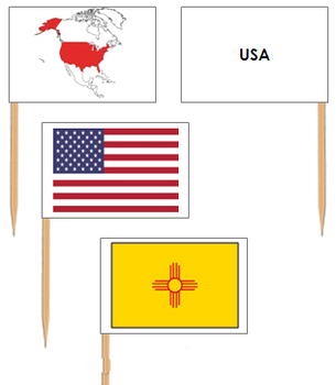 United States of America Flags - Pin Map Flags