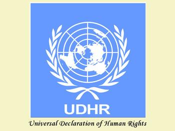 Universal Declaration of Human Rights (UDHR) for NYS grade 5 ELA module 1