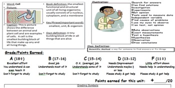 Universal Vocabulary Comprehension PowerPoints