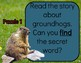 Unlock the Box: All About Groundhogs