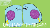 Until We're In Mitosis (A Cell Cycle Song)