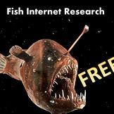 Unusual Fish Internet Research