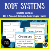 Human Body Systems Games: Scavenger Hunt