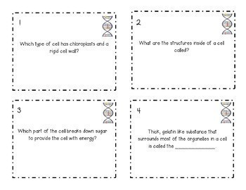 Up & Around Science Scavenger Hunt: Cell Structures {NGSS MS-LS1-2}