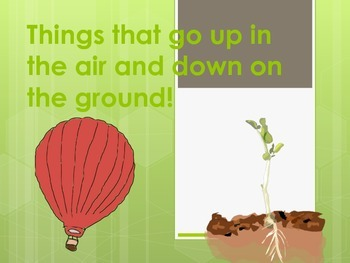 Up and Down- What goes up and What stays down?