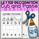 Upper-Lower Case Letter Recognition Matching Activity