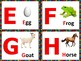 Upper and Lower Case Alphabet Flash Cards