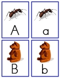 Uppercase/Lowercase ABC Letter Match Cards