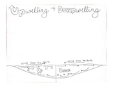Upwelling and Downwelling Doodle Notes