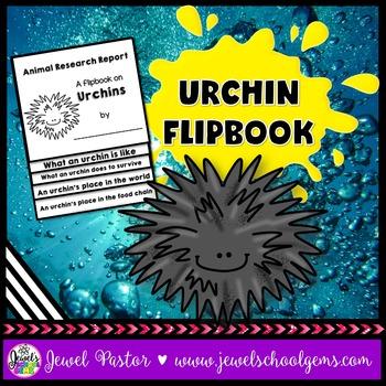 Urchin Science Activities (Urchin Research Flipbook)