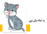 Urdu storybook- ب سے بلي