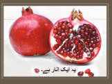 Urdu storybook- ا سے انار