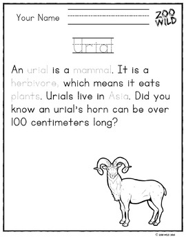 Urial -- 10 Resources -- Coloring Pages, Reading & Activities