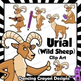 Urial (Wild Sheep) Clip Art with Signs - Letter U in Alpha
