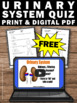 FREE Urinary System Worksheet, Human Body Systems Grade 5 Review