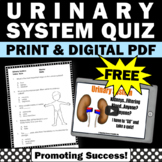 FREE Urinary System Activity Quiz 5th Grade Human Body Systems Digital Printable