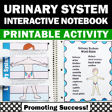 Health Urinary System Activity, Human Body Systems Interactive Notebook