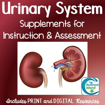 Urinary System Supplements for Instruction and Assessment