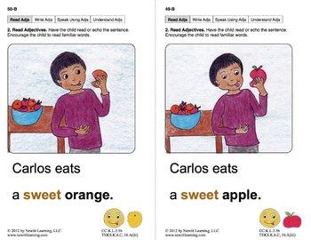Use Descriptive Words: Lesson 5, Book 19 (Newitt Grammar Series)