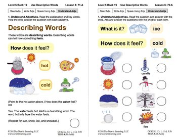 Use Descriptive Words: Lesson 6, Book 19 (Newitt Grammar Series)