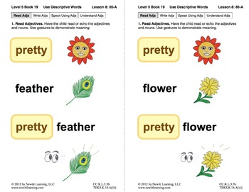 Use Descriptive Words: Lesson 8, Book 19 (Newitt Grammar Series)
