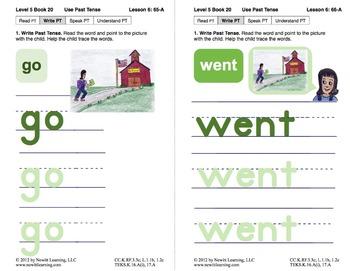 Use Past Tense: Lesson 6, Book 20 (Newitt Grammar Series)