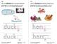 Use Singular and Plural Nouns: Lesson 2, Book 19 (Newitt Grammar Series)