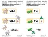 Use Singular and Plural Nouns: Lesson 3, Book 19 (Newitt Grammar Series)