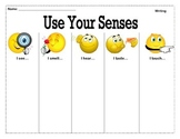 Use Your Senses! Sensory Detail Graphic Organizer