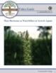 Uses of Plant Hormones: FuseSchool Biology Video Guide