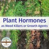 Plant Hormones as  Weed Killers or Growth Agents - Biology Video Guide Worksheet