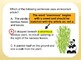 Using Articles A, An, & The Grammar PPT + Printables