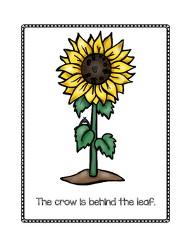 Prepositions in Preschool--Where is the Crow?