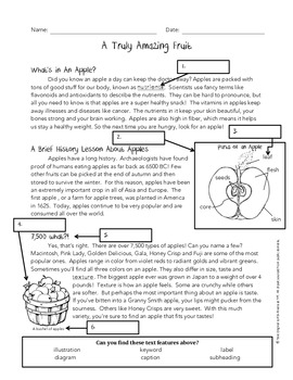Using Text Features Worksheet - Apples