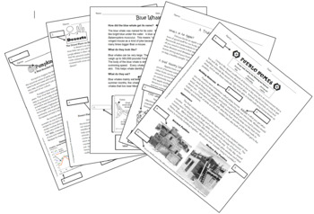 Using Text Features Worksheet BUNDLE (5 handouts)
